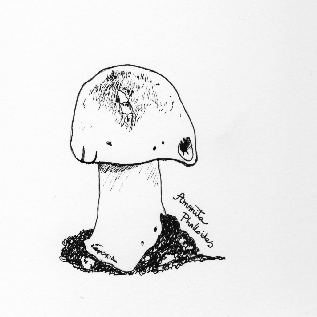 Lisbeth van Lintel inktober poisonous_01